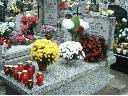 Opieka nad grobami i mogiłami w Trójmiescie, Gdańsk, pomorskie