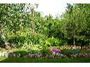projektowanie i zakładanie ogrodów . kompleksowe, Radonie, mazowieckie