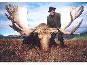 Organizujemy polowania na WSCHODZIE !!!, Krzesk , mazowieckie