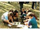 Edukacja ekologiczna-warsztaty, seminaria!Przysiek, Zławieś Wielka, kujawsko-pomorskie