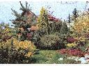 Projektowanie ogrodów to nasz pasja, Ślask Cieszński, śląskie