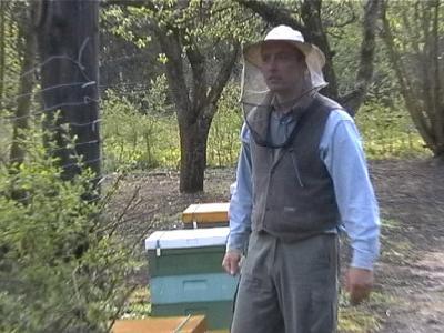 Mistrz pszczelarstwa zaprasza! Pasieka!