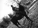 Jazda konna stajnia Appaloosa, Wrzeszczyn , dolnośląskie
