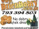 DzienDobry - internetowy sklep spożywczy. Dowóz., Warszawa, mazowieckie