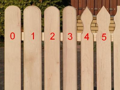 Zdjęcie nr 1 - kliknij, aby powiększyć