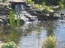 ogrody od podstaw, toruń,aleksandrów kujawski,włocławek,ciechocinek, kujawsko-pomorskie