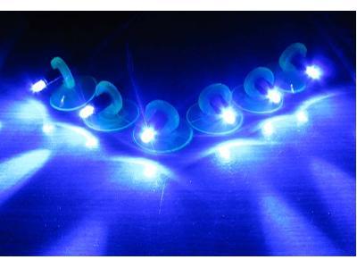 Oświetlenie Led Nocne Do Akwarium Zestaw 6 Led Nr 32441 Lokalizacja Cała Polska