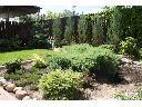 Projektowanie, zakładanie i pielęgnacja ogrodów, Chotomów, Legionowo, Jabłonna, Białołeka, mazowieckie