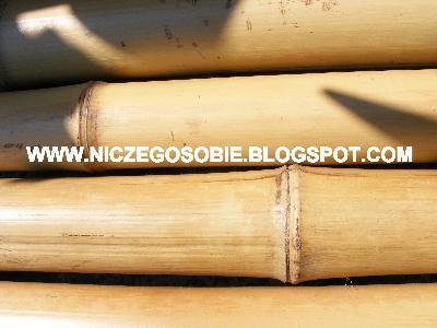 www.niczegosobie.blogspot.com - kliknij, aby powiększyć