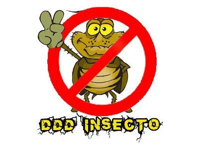 DDD Insecto - kliknij, aby powiększyć