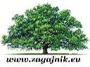 usługi ogrodnicze/budowlane, szczecin, zachodniopomorskie