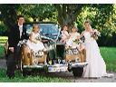 Samochód zabytkowy ROLLS-ROYCE Silver Cloud (1964, Olsztyn, cała Polska, warmińsko-mazurskie