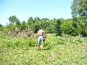 Wycinanie formowanie drzew i krzewów - ŁÓDŹ.., Łódź, Andrespol, okolice, lubuskie