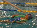 Pływanie dla dorosłych Szczecin, Szczecin, zachodniopomorskie