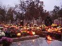 sprzątanie grobów, kielce, świętokrzyskie
