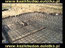 KAZIK-BUDEO Firma Budowlana Dekarska Murarska