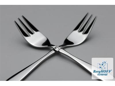 FIRMA BERGHOFF POLSKA - www.berghoff.pl