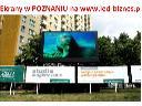 EKRAN LED POZNAŃ RONDO SOLIDARNOŚCI  506 599 481, Poznań, wielkopolskie