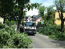 Wycinka, pielęgnacja drzew, przycinka z podnośnika, Jasło, Krosno, Sanok, podkarpackie