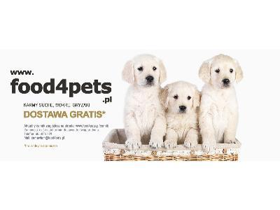 www.food4pets.pl - karmy suche mokre dla psów kotów wrocław - kliknij, aby powiększyć