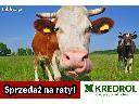 Kredrol najkorzystniejszy partner w rolnictwie, cała Polska