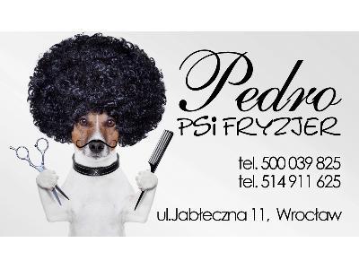Pedro Psi Fryzjer Profesjonalne Strzyżenie Psów Wrocław