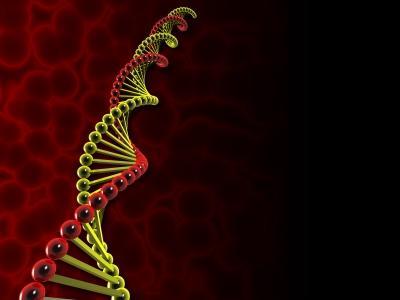 Zastosowanie testów DNA