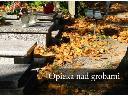 groby i nagrobki - sprzątanie, czyszczenie, nabłyszczanie,konserwacja,, Bielsko-Biała, śląskie