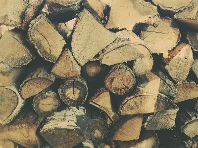 Wycinka drzew, czyszczenie działek, skup drzewa i lasów, mazowieckie