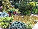 Pielęgnacja ogrodów, pielęgnacja ogrodu, usługi ogrodnicze, ogród, Sieradz (łódzkie)