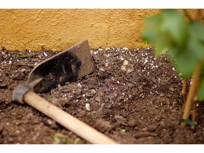 Jak przygotować glebę w ogrodzie przed sadzeniem roślin?