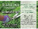 Usługi ogrodnicze, koszenie traw, wycinka drzew, pielęgnacja ogrodów, Zduńska Wola (łódzkie)