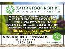 Wypożyczalnia Sprzętu Ogrodniczego Poznań, Swarzędz i okolice, Szczytniki, wielkopolskie