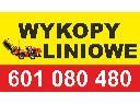 Wykopy liniowe, Turek (wielkopolskie)