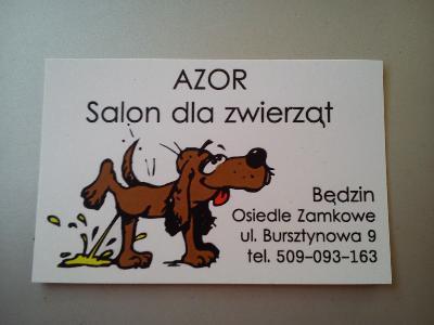 Azor Salon Dla Zwierząt Będzin Czeladź Wojkowice Dąbrowa