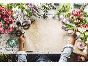 Usługi ogrodnicze, prace porządkowe, odśnieżanie, Gostynin, Płock, kutno, Włocławek,, mazowieckie
