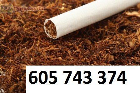 Tyton Tani dobry Tytoń tyton do palenia tyton do gilz tyton papierosow, Olsztyn, warmińsko-mazurskie