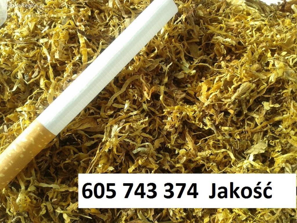 Tani tyton tylko 65zl kg tyton papierowosy tyton do gilz tytoń GWARANC, Olsztyn, warmińsko-mazurskie