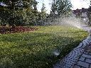 Zakładanie trawników z rolki oraz z siewu , SZCZECIN (zachodniopomorskie)