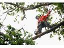 Prace alpinistyczne, Radomin (kujawsko-pomorskie)