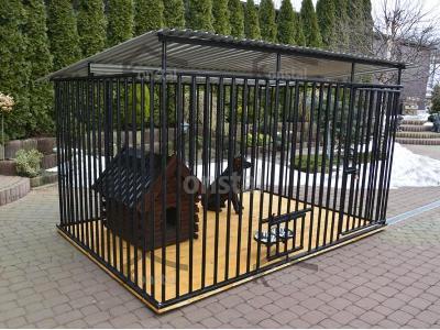 Jaki kojec zapewni bezpieczeństwo psu na podwórzu?