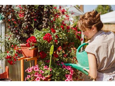 Jakie prace ogrodowe należy wykonać w sierpniu?