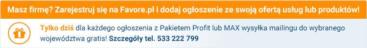 Promocja - darmowy mailing do Pakietu Profit lub MAX