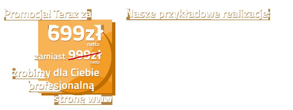 Za kwotę 244zł netto, zrobimy dla Ciebie kompletną stronę www.