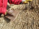 Ekologiczne pokrycia dachowe z trzciny!, Giżycko, warmińsko-mazurskie