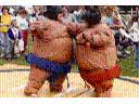 Walki sumo w specjalnych strojach! Dużo śmiechu!, Legionowo, mazowieckie