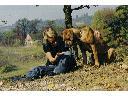 Wyprowadzanie psów z elem. szkolenia pozytywnego