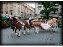 Dorozka, kareta, powoz do slubu ,turystycznie,..., wieliczka, małopolskie
