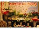Flowers Broadway