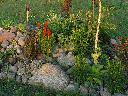 Koszenie i zakładanie trawnika,Brenna, BRENNA, śląskie